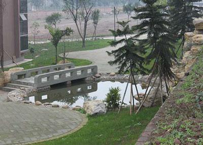 校园小桥流水.jpg