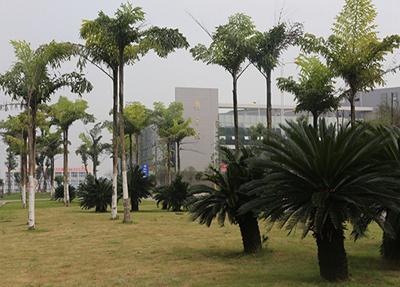 宜宾职业技术学院读学前教育有就业保障吗