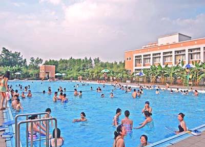 充满活力的游泳池