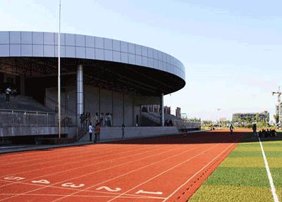 标准的运动场